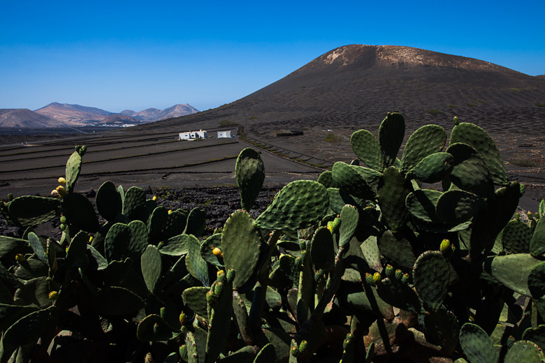 lanzarote_gross_1