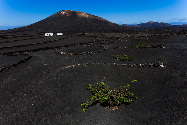lanzarote_gross_2