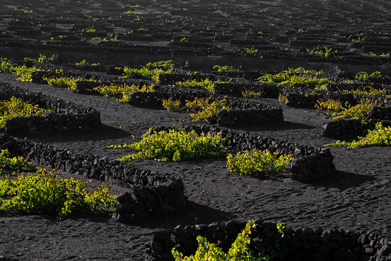 lanzarote_gross_5