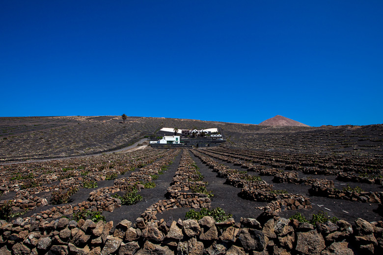 lanzarote_gross_7