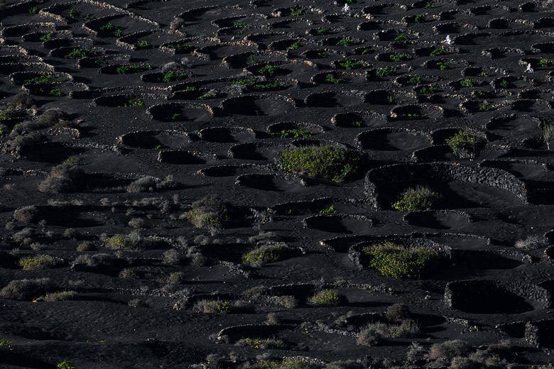 lanzarote_gross_8